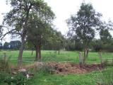 Für alle die große Grundstücke lieben! Freier Blick über Wiesen und Felder